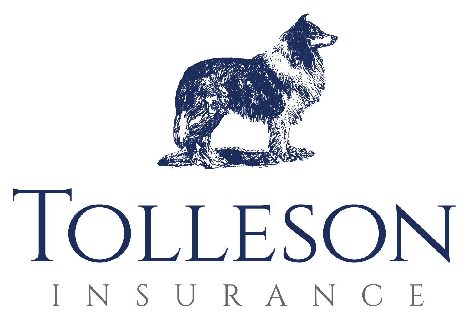 TollesonInsurance_FinalLogo(color)